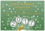2017 voeux nouvel année